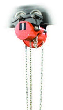 Example Low Headroom CM Hoist | Wallace Cranes